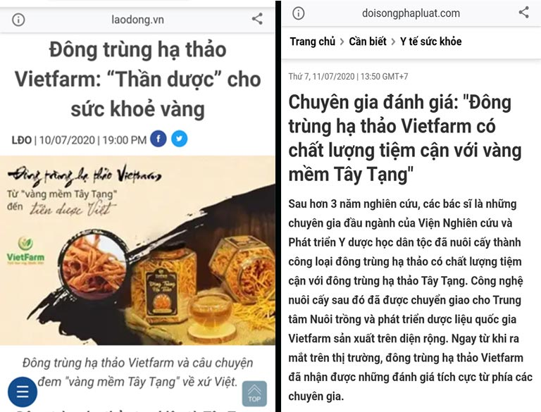 Báo Lao Động, báo Đời sống pháp luật,...đưa tin về ĐTHT Vietfarm