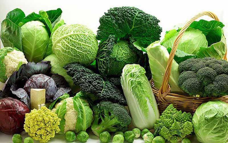 Rau xanh có thể bổ sung nhiều chất xơ, phục vụ cho quá trình điều trị