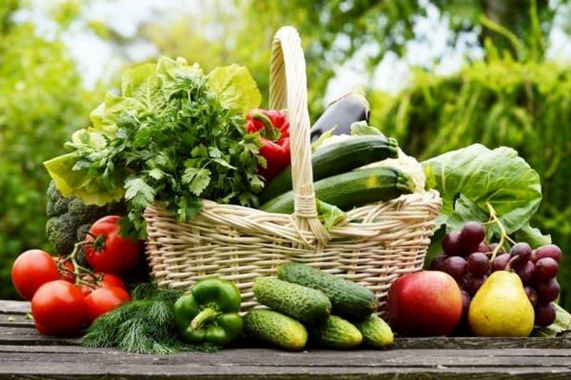 Rau xanh và trái cây tươi nên có mặt trong thực đơn hàng ngày