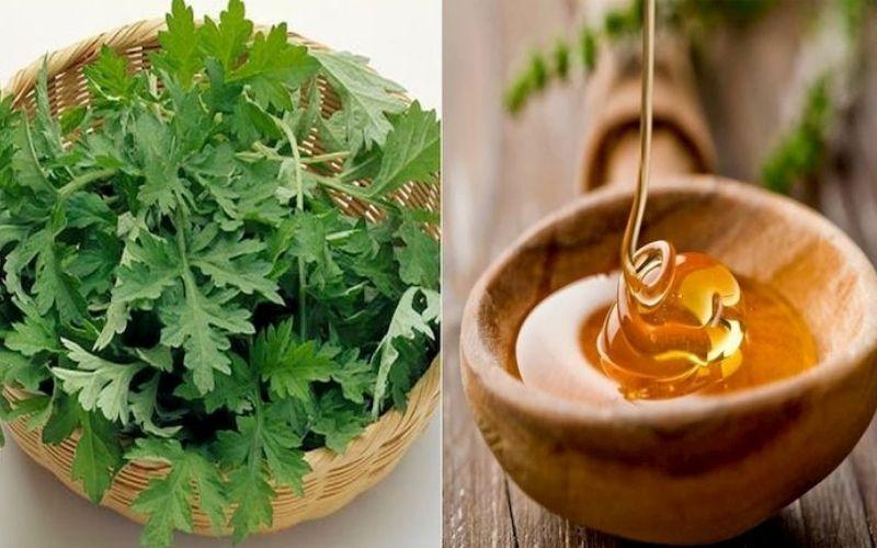 Ngải cứu kết hợp mật ong là cách chữa thoái hóa đốt sống cổ bằng thuốc Nam hiệu quả tại nhà