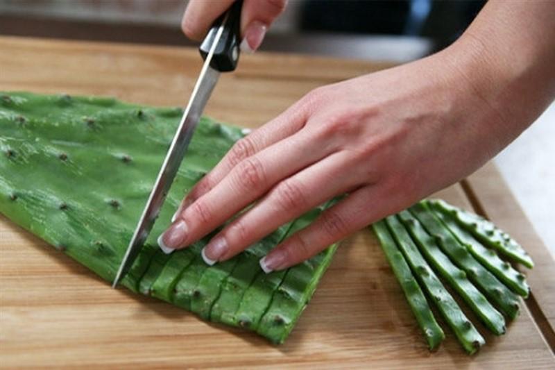 Chữa thoát vị đĩa đệm bằng cây xương rồng luộc đơn giản tại nhà