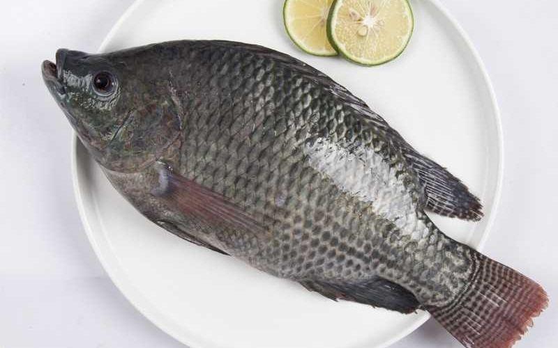 Cá rô phi có thể sử dụng để nấu canh với rau ngót