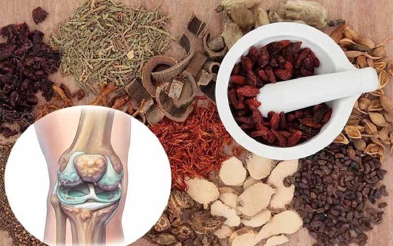 Điều trị thoái hóa khớp gối bằng Đông y lành tính và hiệu quả tốt trong chữa nhiều triệu chứng xương khớp
