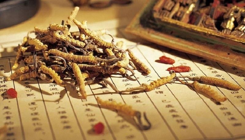 Đông trùng hạ thảo Hàn Quốc là các sản phẩm rất chất lượng