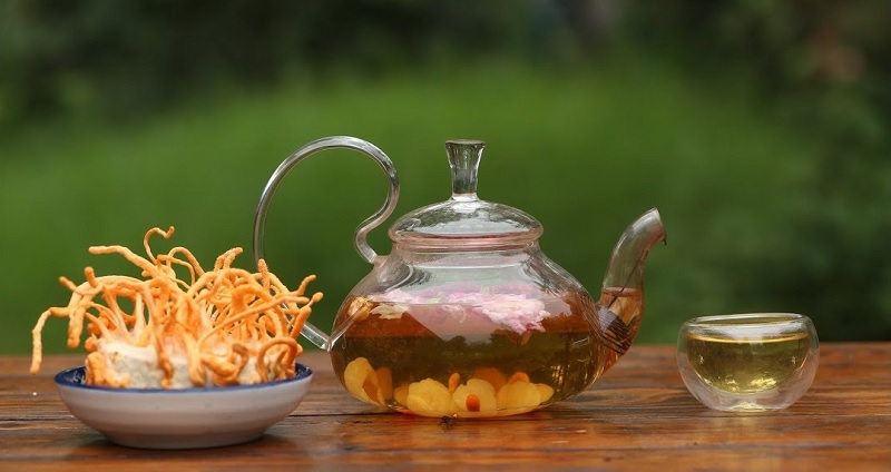 Uống trà đông trùng hạ thảo mỗi ngày để nâng cao đề kháng