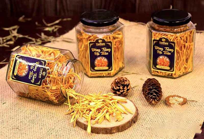 Đông trùng hạ thảo bán tự nhiên Vietfarm chất lượng cao