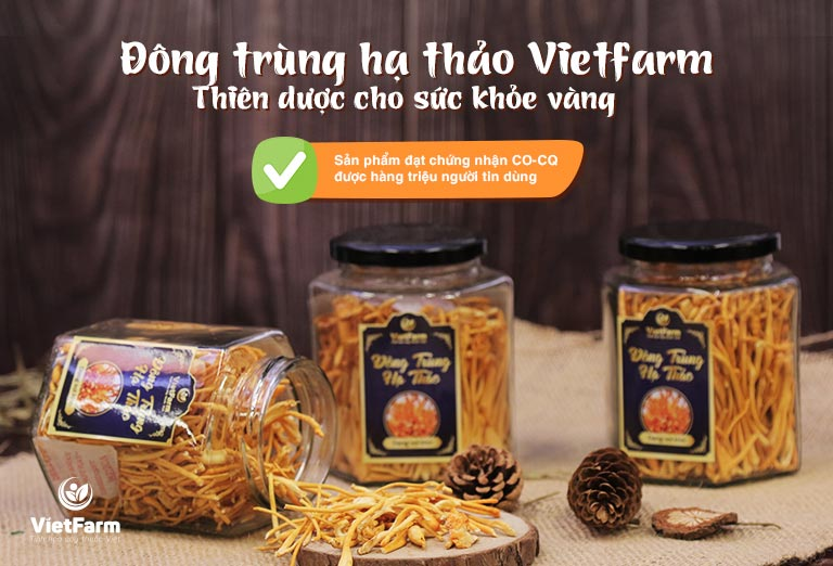 Đông trùng hạ thảo Vietfarm - Thiên dược vàng cho sức khỏe