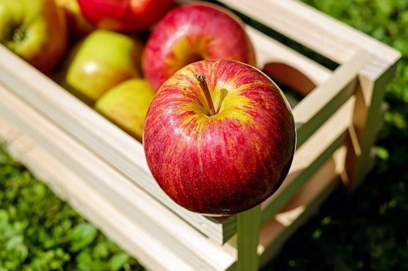 Dư axit trong dạ dày nên ăn gì - Sử dụng táo