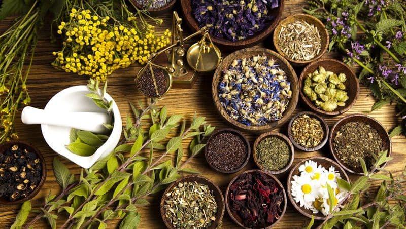 Một số vị thuốc Đông y dùng trong trị bệnh liên quan đến tình trạng tiểu buốt