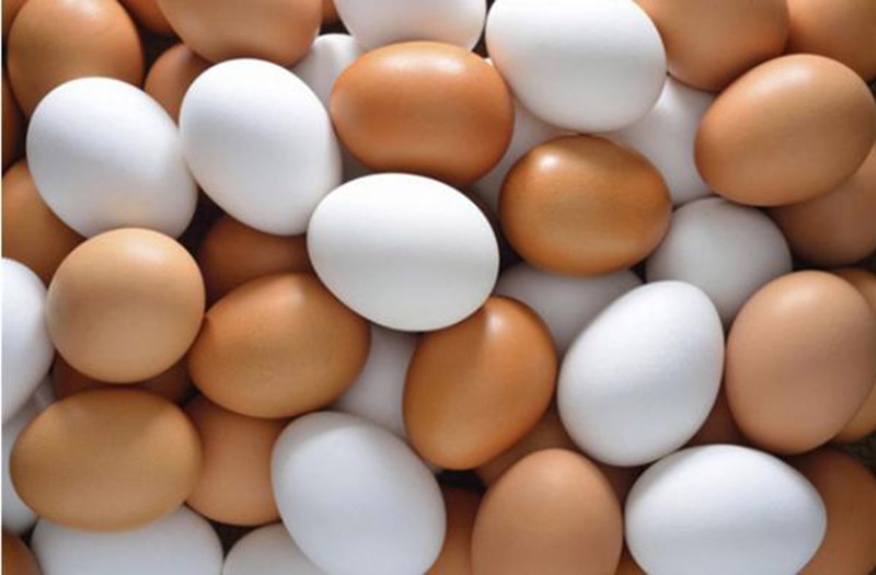 Tiểu ra máu uống thuốc gì? Người bệnh nên sử dụng bài thuốc dân gian kết hợp giữa trứng gà và sinh địa hoàng