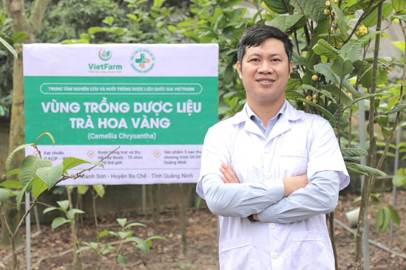 Vùng trồng trà hoa vàng đạt chuẩn GACP - WHO của Vietfarm tại Ba Chẽ - Quảng Ninh