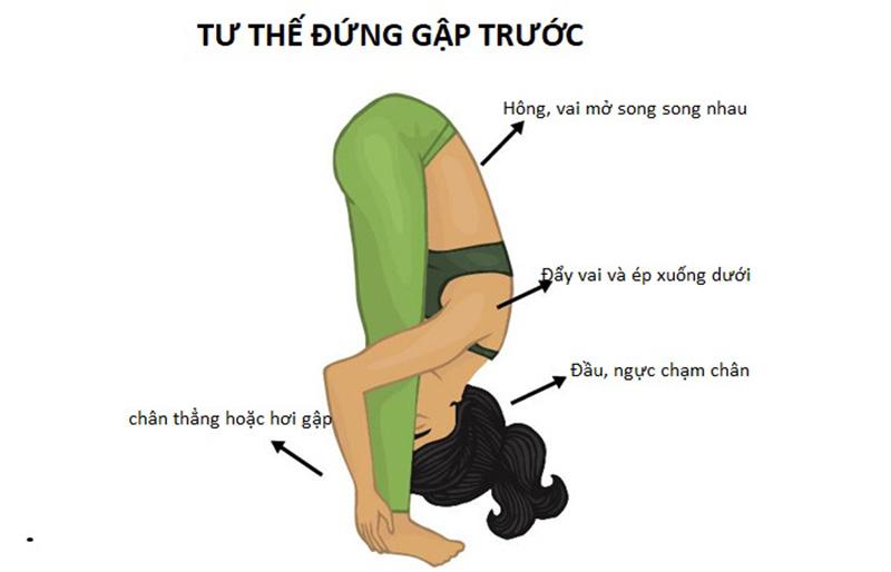 Tư thế Yoga trị viêm xoang đứng gập người (Uttanasana)