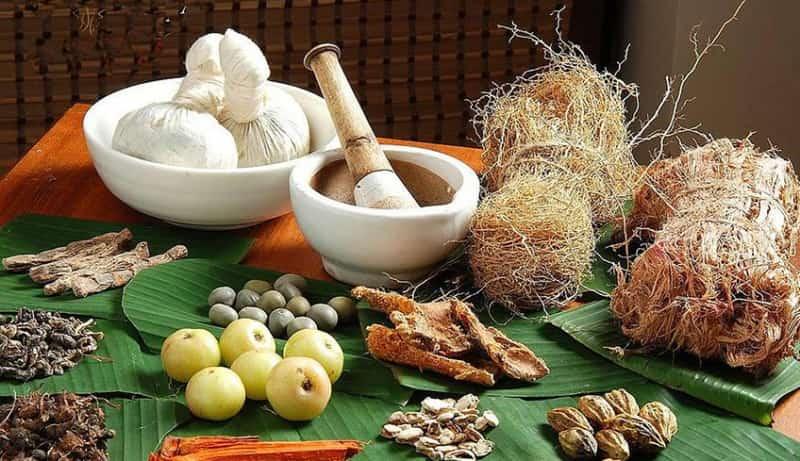 Các bài thuốc Đông Y trị viêm âm đạo hiệu quả