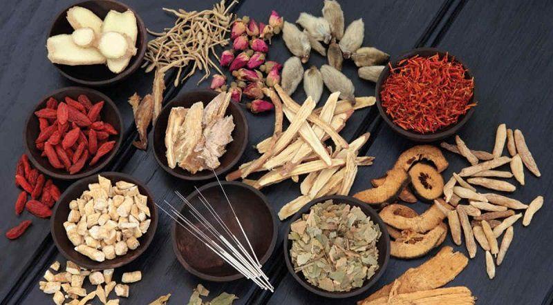 Các thuốc Đông y trị viêm đường tiết niệu phổ biến