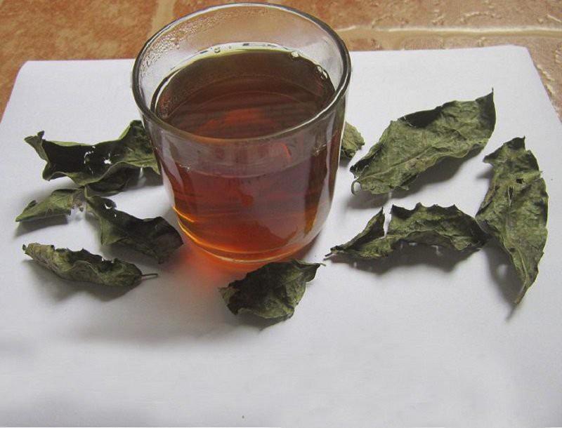 Nước sắc cây khôi giúp giảm nhanh các triệu chứng ợ hơi, ợ chua,...