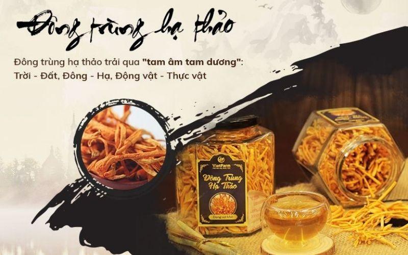 Đông trùng hạ thảo Việt Nam được nuôi cấy trên ống nghiệm đảm bảo giá trị dinh dưỡng cao
