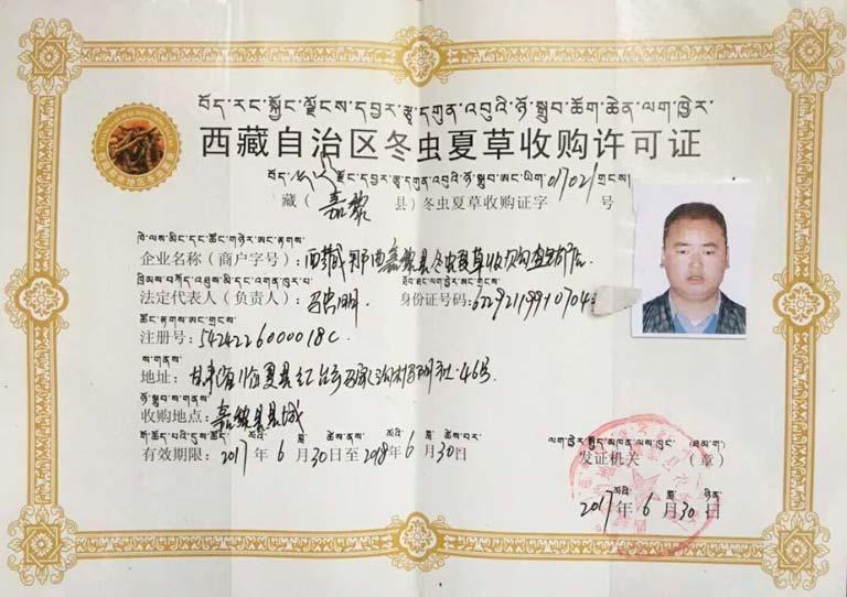 Giấy chứng nhận thu mua đông trùng hạ thảo Tây Tạng do công ty Tây Tạng Thiên Na cấp cho Vietfarm