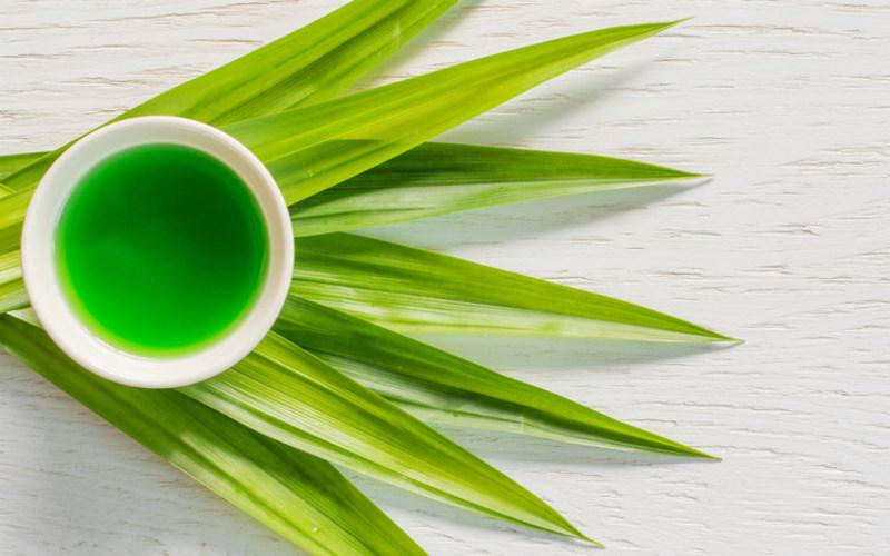 Trà lá thơm giúp điều trị bệnh tiểu đường hiệu quả