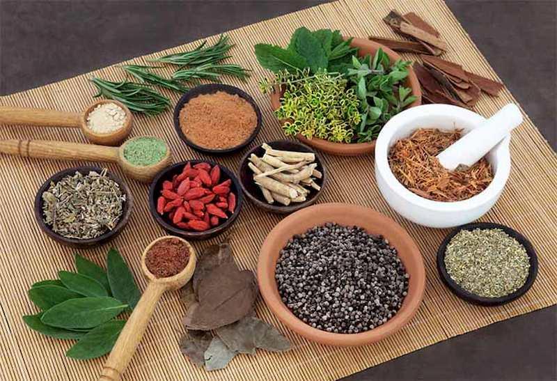 Bài thuốc Đông y rất an toàn nên có thể dùng điều trị sỏi bùn túi mật trong thời gian dài