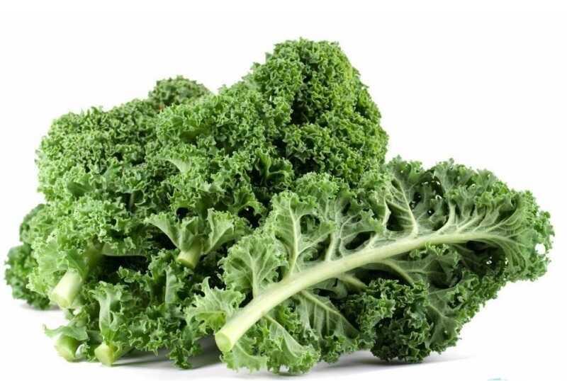 Rau cải xoăn dễ gặp trong bữa ăn gia đình nhưng không tốt cho người bệnh thận
