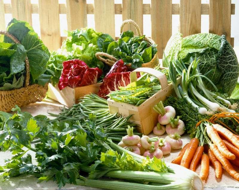Vitamin và chất xơ có trong rau củ quả tươi rất tốt cho quá trình điều trị bệnh