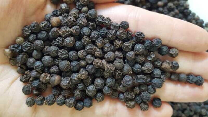 Tính ấm của hạt tiêu đen rất tốt cho người bị ho