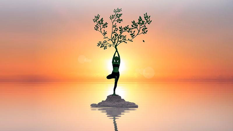 Tư thế cây là tư thế đơn giản mà lại đem đến hiệu quả rất tốt