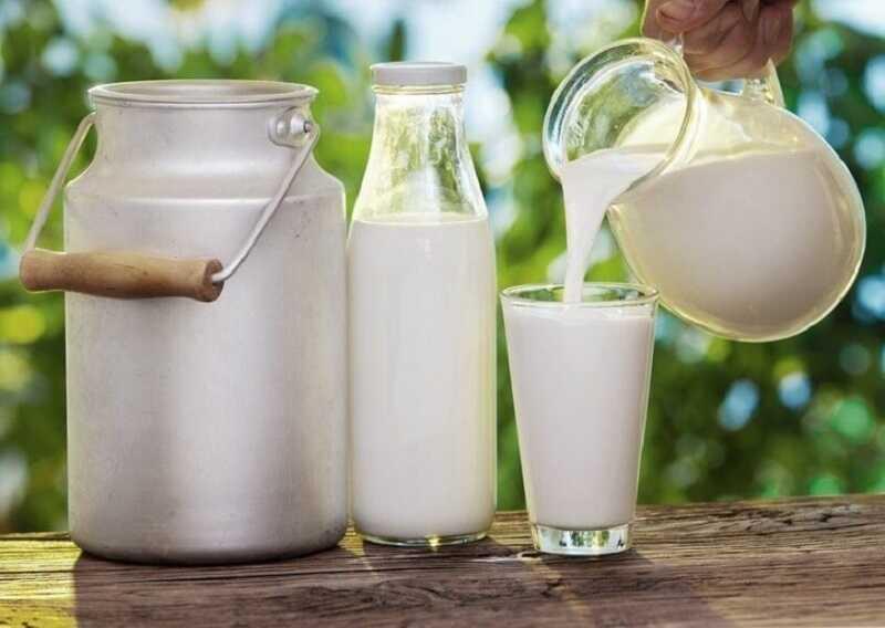 Bệnh sỏi thận uống sữa gì? Sữa tươi ít béo
