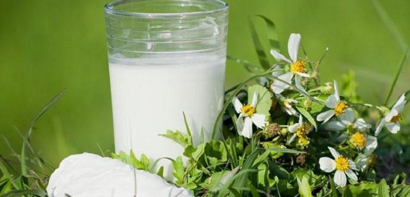 Cát căn còn dùng để chữa bệnh đau mỏi cho trẻ nhỏ và viêm tủy xám