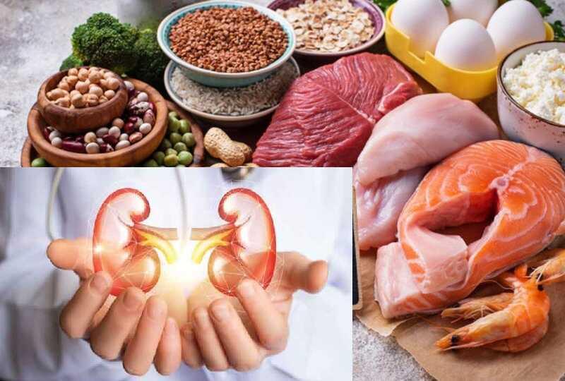Chạy thận nên ăn gì? Bổ sung đủ lượng protein cần thiết