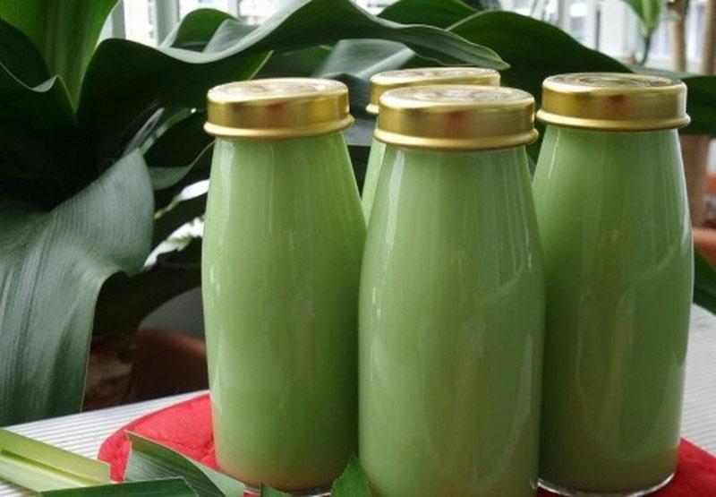 Chữa thoái hóa bằng lá lốt và sữa bò là cách chữa bệnh từ bên trong