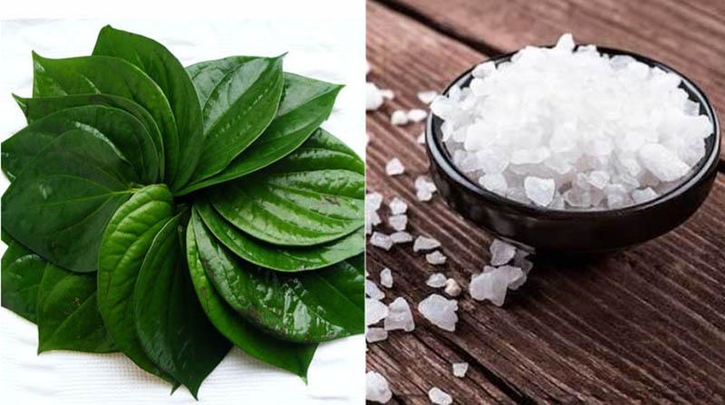 Chị em có thể kết hợp trầu không với muối để gia tăng hiệu quả