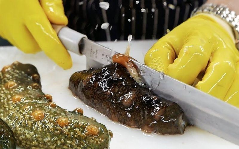 Sơ chế Hải sâm tươi cần thực hiện đúng cách để giữ được hương vị tự nhiên