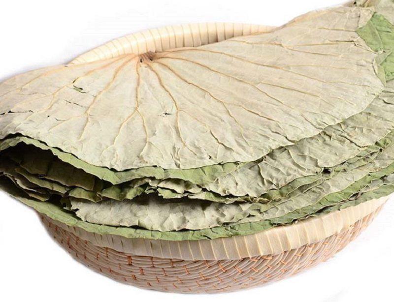 Dùng loại lá này ở dạng khô có thể chữa được nhiều bệnh như rong huyết, mỡ máu, mất ngủ, sốt...