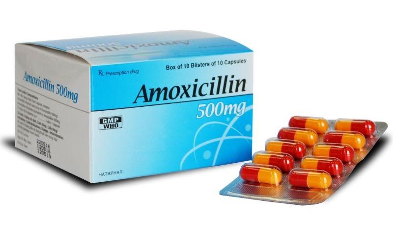 Amoxicillin là dòng thuốc kháng sinh thông dụng nhất hiện nay
