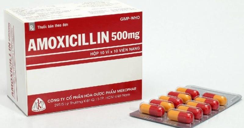 Thuốc Amoxicillin có khả năng điều trị ho gà ở người lớn hiệu quả