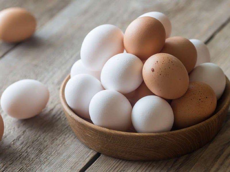 Ho có nên ăn trứng không là thắc mắc chung của rất nhiều người