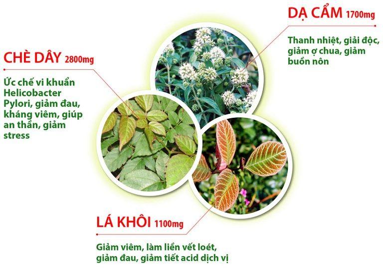 Tác dụng của 3 loại dược liệu quý