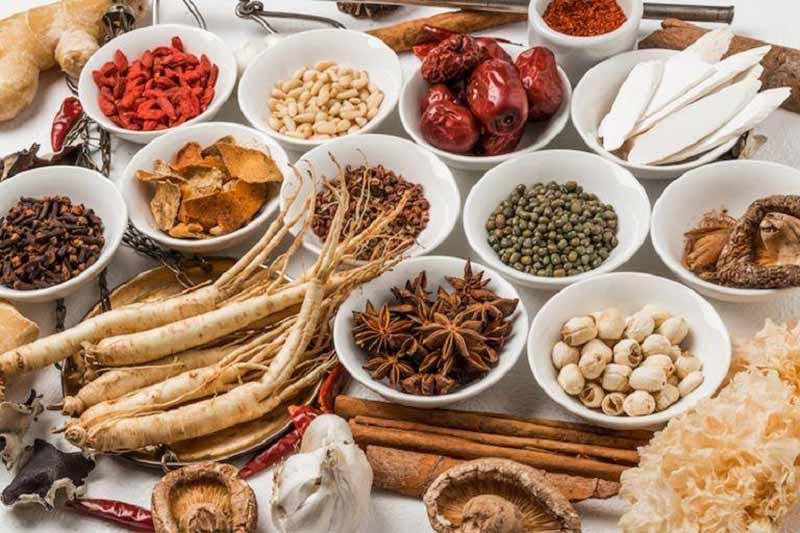 Các bài thuốc Đông y vừa có khả năng trị bệnh hiệu quả lại vừa bồi bổ cho cơ thể
