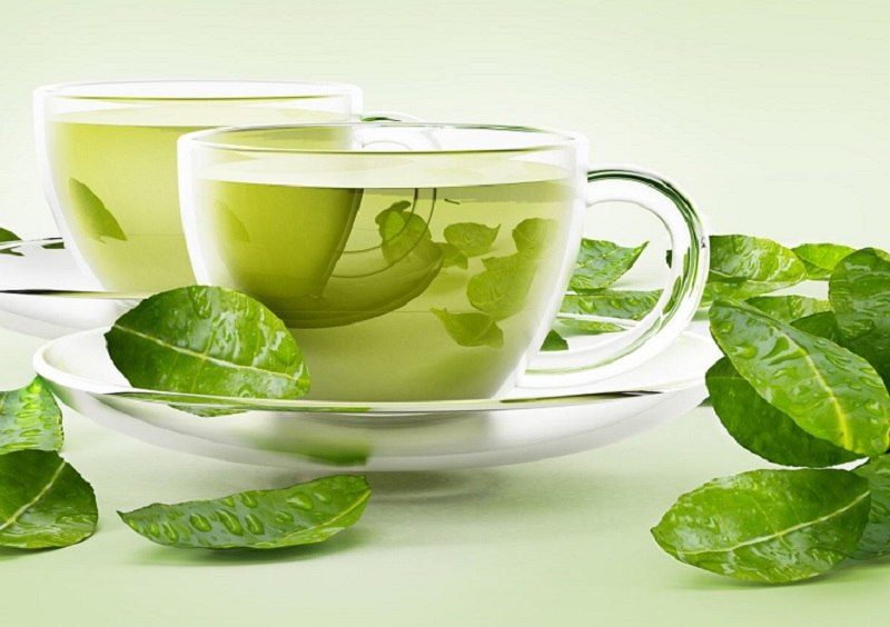 Điều trị viêm đường tiết niệu sau sinh bằng lá trà xanh
