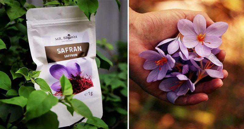 Người dùng có thể tin tưởng sử dụng nhụy hoa nghệ tây Đức
