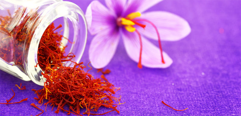 Saffron của Mỹ có thực sự tốt không? - Câu hỏi được rất nhiều bạn đọc quan tâm