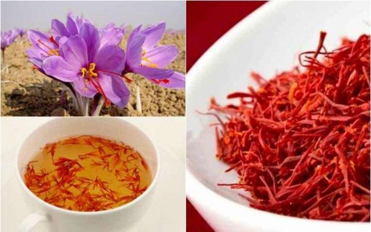 Nhụy hoa nghệ tây Dubai: Nguồn gốc, công dụng, giá bán chi tiết