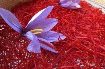 Nhụy hoa nghệ tây Iran là gì? Công dụng, cách dùng và giá bán tham khảo
