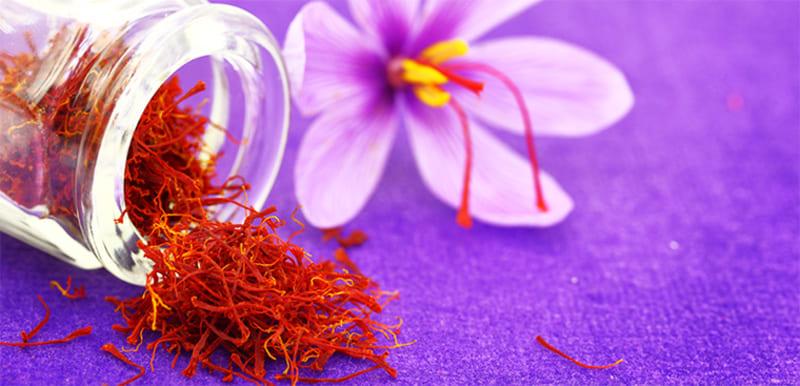 Nhụy hoa nghệ tây Nhật Bản có nguồn gốc từ Iran, Tây Ban Nha...
