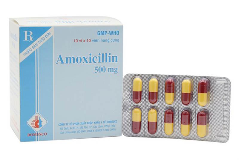Thuốc chữa viêm lợi Amoxicillin 500mg có giá bán lẻ khoảng 1000 vnđ/ viên