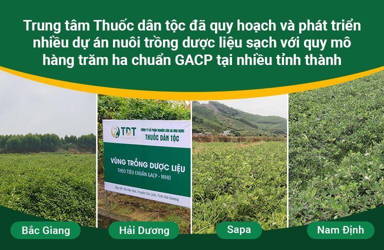 Vườn dược liệu thuộc sở hữu của Thuốc dân tộc