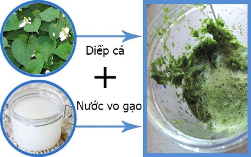 Rau diếp cá có thể kết hợp với nước vo gạo để gia tăng công dụng trị ho