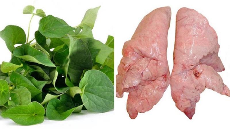 Phổi lợn xào diếp cá là món ăn có tác dụng trị ho rất tốt