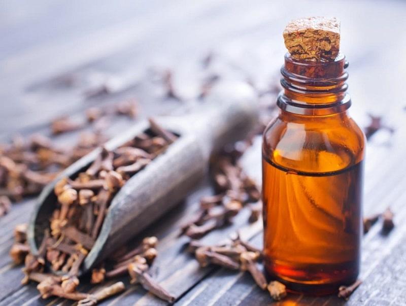 Đinh hương có thể giảm tình trạng sâu răng rất tốt